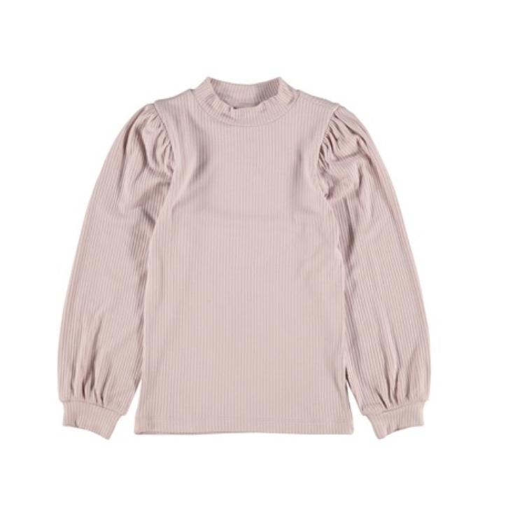 Rosa genser Lidania